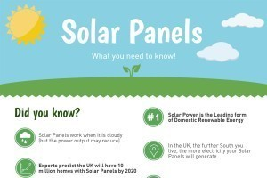 About Solar Panels Infographic